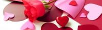 عشق و شادکامی از دیدگاه روانشناسان مثبت گرا
