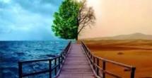 کارشناس محیط زیست |کارشناس رسمی دادگستری محیط زیست|مهندسی محیط زیست